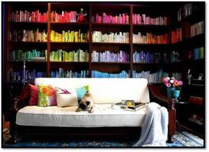 Colour-coded Dream Bookcase