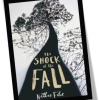 Review: The Shock of the Fall