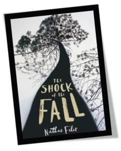 The Shock of the Fall Cover
