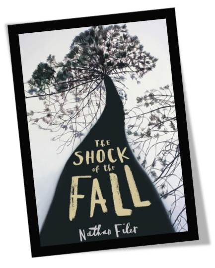 The Shock of the Fall Book Cover