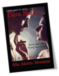 True North Book 1 Cover