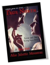 True North Book 1 Cover
