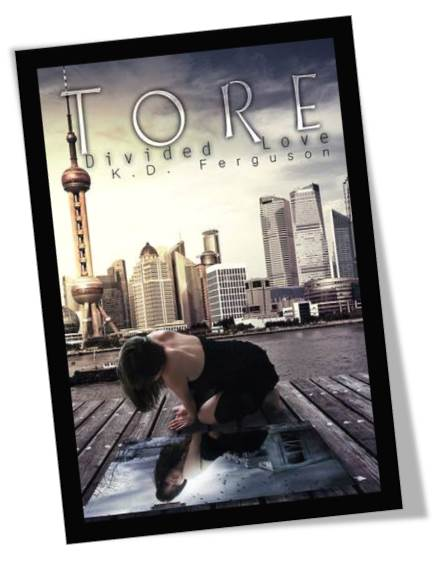 Tore Divided Love Book Cover