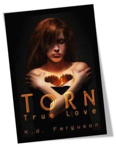 Torn True Love Book Cover