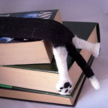 Cat SPLAT Bookmark
