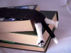 Cat SPLAT Bookmark