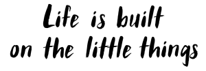Life is built on the little things image